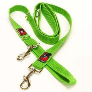 Lead Walking Accessories